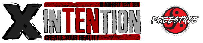 Intention 2015: Freestyle Martial Arts Black Belt Test